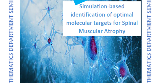 Seminar invitation: Simulation-based identification of optimal molecular targets for Spinal Muscular AtrophyAbstract